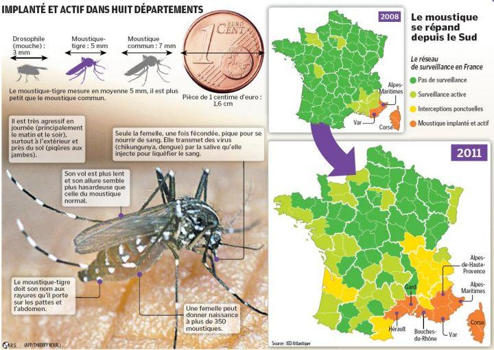 carte des moustiques en france Carte de présence progression 2008 2011 moustique tigre France