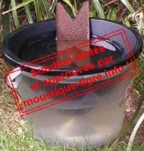 piege-a-moustiques-larves