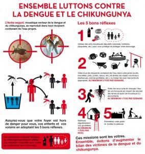 chikungunya-aedes-aegypti