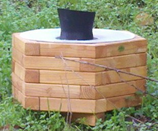 test de la ceinture anti moustique biobelt moustique tigre portail d 39 information. Black Bedroom Furniture Sets. Home Design Ideas