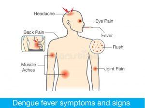 symptomes fievre dengue