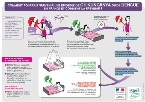 plaquette epidemie dengue chikungunya france