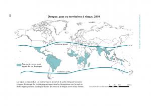 vigilance-moustique-tigre-dengue-source-OMS