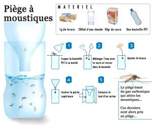 Piège à moustique