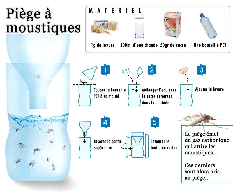 Construire un piège à moustique | Moustique tigre - Portail d ...