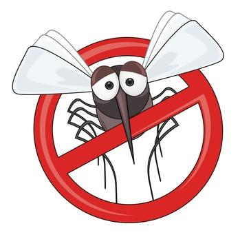 Stop moustique