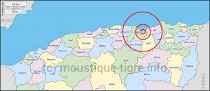 moustique tigre Algerie